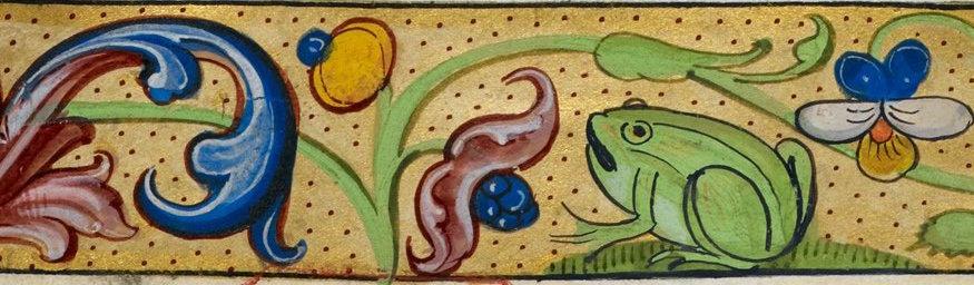 Frog illustration cropped